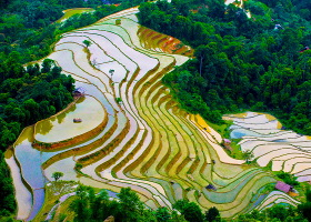 Hanoi – Halong – Sapa 7 Days Tour